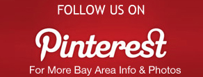 follow-us-on-pinterest custom