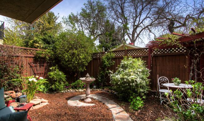 Devonshire Backyard