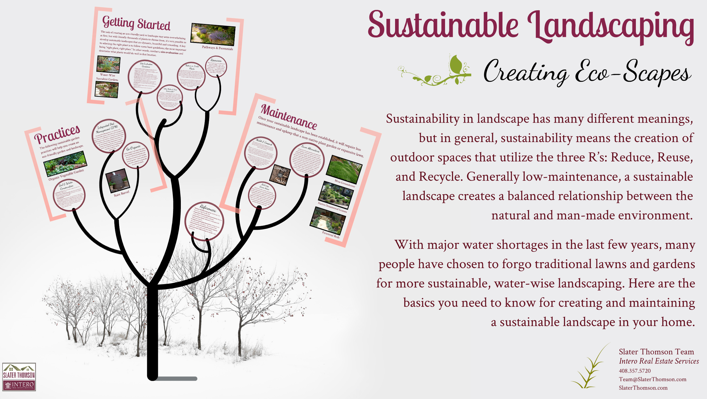 Sustainable Landscaping Prezi
