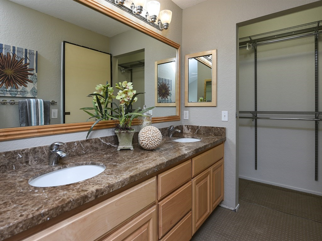 Desin Master Bathroom